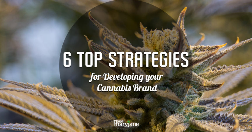 6 TOP STRATEGIES FOR DEVELOPING YOUR CANNABIS BRAND